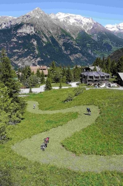 Scenic Hikes